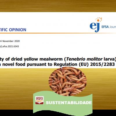 EFSA avalia e aprova a segurança do consumo das larvas do Tenébrio